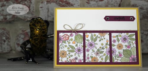 Inside the Lines DSP Stampin' Up!