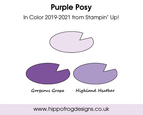 Purple Posy In Color from Stampin' Up! Project designed by Karen at HIPPOFROG Designs