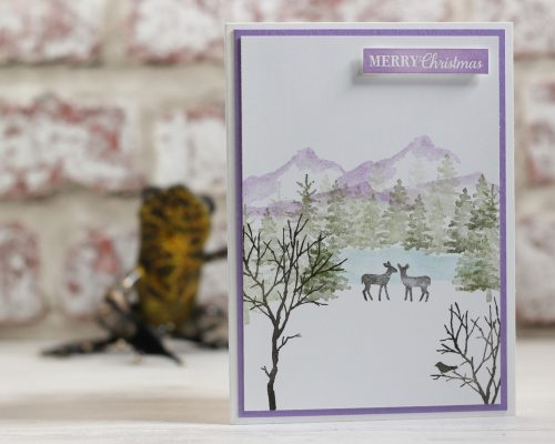 Snow Front Stamp Set. Project designed by Karen at HIPPOFROG Designs