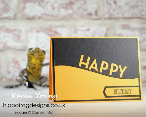 Two Cards For a Pair of Teenagers. Project designed by Karen at HIPPOFROG Designs