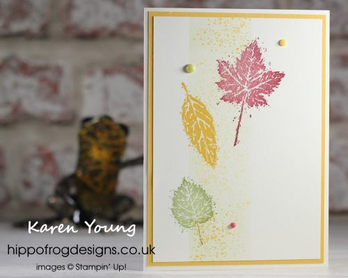 Happy New Mini Catalogue & SAB. Project designed by Karen at HIPPOFROG Designs